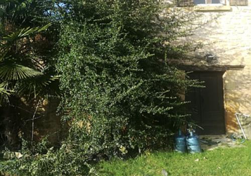Paysagiste / Espaces verts